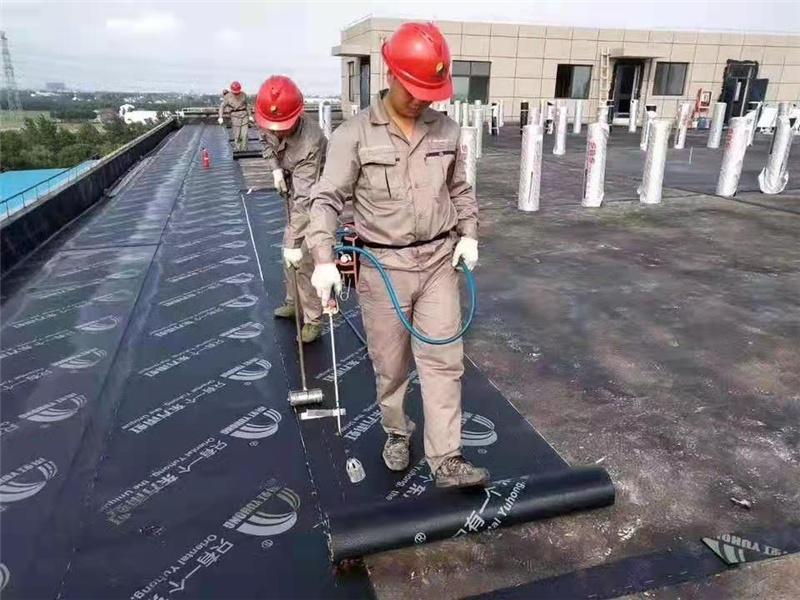 阿坝服务好的氟碳漆费用低创新服务